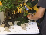 Gary Howes - moss added as ground cover  - Water landscape demo Oyama Winterbash