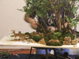 Gary Howes - note the hunter behind the big tree - Water landscape demo Oyama Winterbash